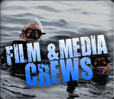 We provide professional film services on the open oceans with sharks. Learn more.
